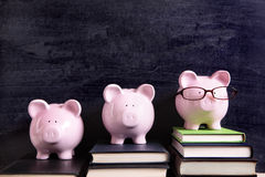 Tre spargrisar med svart tavla, högskolaavläggande av examen eller besparingar betalar begrepp Royaltyfri Bild