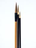 Tre spazzole Fotografia Stock Libera da Diritti