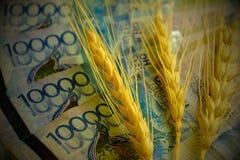 Tre spighette di grano sono sulle banconote del Kazakistan Quattro banconote di decimillesimo di tenge Concetto: il prezzo di gra immagine stock