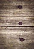 Tre spikar bultat in i ett träbräde royaltyfria bilder
