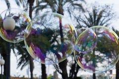 Tre stora bubblor royaltyfri bild