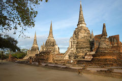 Tre stupas del tempio buddista Wat Phra Si Sanphet nel primo mattino Ayuthaya thailand fotografie stock