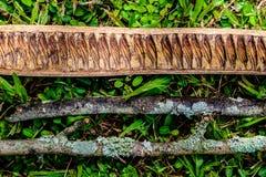 Tre stycken av torrt trä som ligger på gräs i träna som bildar a Arkivbilder