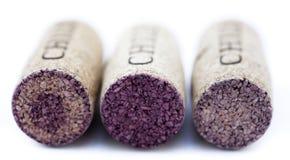 Tre sugheri del vino Fotografie Stock
