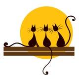 Tre svart katter Royaltyfria Bilder