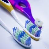 tre tandborstar Arkivbilder
