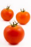 tre tomater Royaltyfri Fotografi