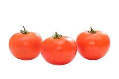 Tre tomater Arkivbild