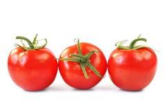 tre tomater Arkivfoton