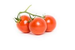 Tre tomater med vinrankan Royaltyfria Bilder