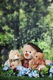 Tre Toy Bears Near il legno Fotografie Stock Libere da Diritti