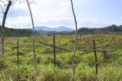 Tre träkors i fält Fotografering för Bildbyråer