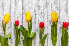 Tre tulipani gialli e tre rossi su un fondo antico bianco d'annata immagine stock