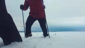 Tre turist- fotvandrare med trekking poler, en ryggsäck och snöskor Lycklig fotvandraregrupp som igenom går i vintertur arkivfilmer