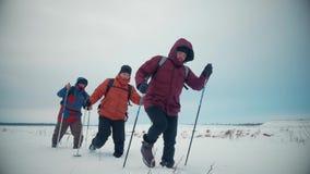Tre turist- fotvandrare med trekking poler, en ryggsäck och snöskor Lycklig fotvandraregrupp som igenom går i vintertur stock video