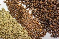 Tre typer av kaffebönor Arkivfoto