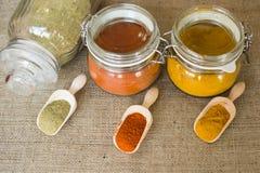 Tre typer av kryddor Fotografering för Bildbyråer