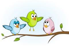 Tre uccelli divertenti Fotografie Stock Libere da Diritti