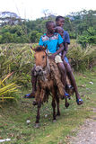 Tre unga pojkar på en häst i lantlig Carbo, Haiti Royaltyfria Foton