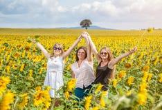 Tre unga vänner i ett solrosfält Arkivfoton