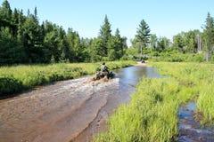 Tre uomini che guidano ATV quad attraverso l'acqua sporca in foresta immagini stock libere da diritti