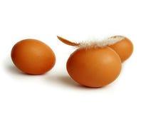 Tre uova con la piuma Fotografia Stock Libera da Diritti