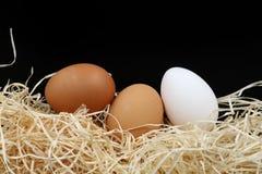 Tre uova con lana di legno Fotografie Stock Libere da Diritti