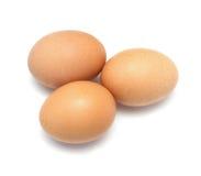Tre uova del pollo Immagine Stock Libera da Diritti