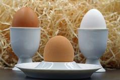 Tre uova della prima colazione in portauovo Immagine Stock Libera da Diritti