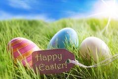 Tre uova di Pasqua variopinte su Sunny Green Grass With Label Pasqua felice Immagine Stock
