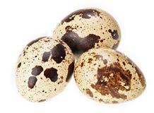 Tre uova di quaglie isolate su bianco Fotografie Stock