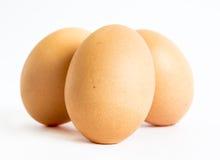 Tre uova isolate Fotografia Stock