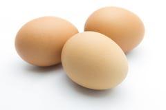 Tre uova isolate su fondo bianco Fotografie Stock