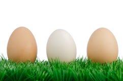 Tre uova su erba Fotografia Stock Libera da Diritti