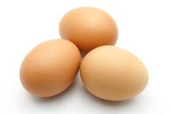 Tre uova su priorità bassa bianca Fotografia Stock