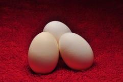 Tre uova su tessuto rosso Immagini Stock Libere da Diritti
