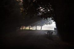 Tre upplysta bänkar i dimman Royaltyfri Fotografi