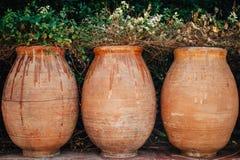 Tre vasi della pianta Fotografia Stock