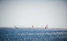 Tre vele fare windsurf sul mare blu Fotografie Stock Libere da Diritti