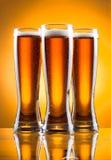 Tre vetri di birra Immagine Stock Libera da Diritti