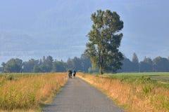 Tre viandanti su un'avventura rurale Immagine Stock Libera da Diritti