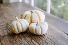 Tre vit Mini Pumpkins på en Wood tabell royaltyfri fotografi
