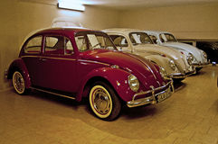 Tre VW-skalbaggar Royaltyfri Bild