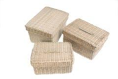 Tre wattled i cestini isolati su priorità bassa bianca Fotografia Stock Libera da Diritti