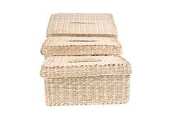 Tre wattled i cestini isolati su priorità bassa bianca Fotografie Stock