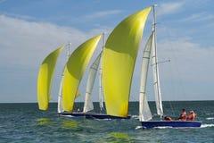 tre yachter Royaltyfri Fotografi