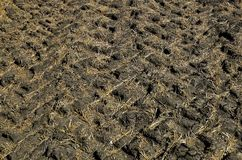 Tread marks from tractor tires. Tractors leave tread tracks over a wet sod, creating a pattern of indentions to the ground Stock Images
