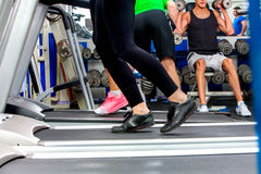 Treadmill and group of legs running group people sport gym Royalty Free Stock Photos