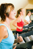 Treadmill in the gym Royalty Free Stock Photo