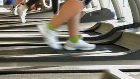 Treadmills in gym hall. Woman's muscular legs on treadmill stock footage
